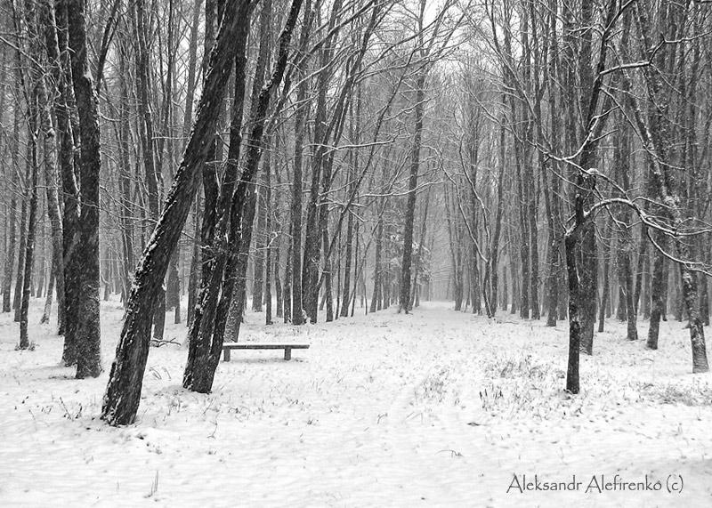 Лишь снег скрипит по ногами...