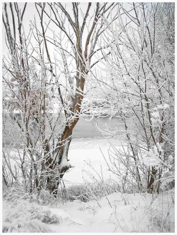 Зимняя сказка на берегу Днепра...