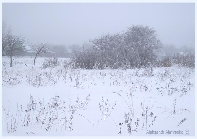 Пейзажик утра туманного...