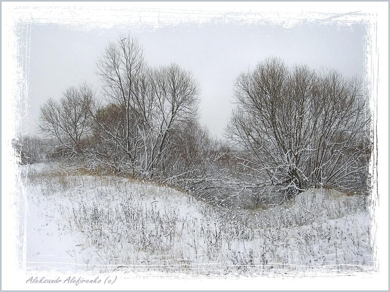 Зимы прозрачная гравюра...