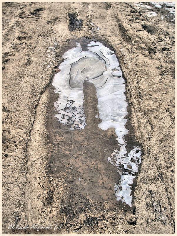 Серия: Мороз на лужах рисует узоры