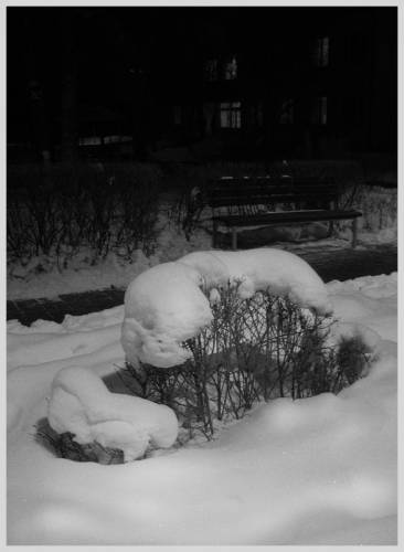 Под тёплым покрывалом февраля...