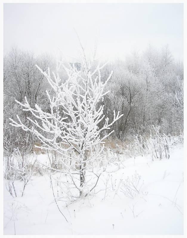 Снегурочка...