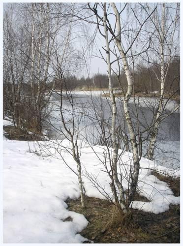 Встреча с любимой рекой....