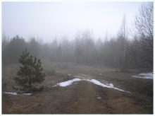 Рудеевский туман...