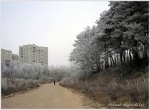 Город зимы